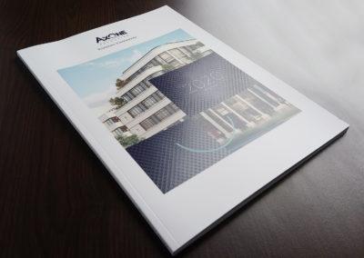 Axone - Book institutionnel